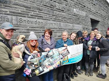 Fundraisers at Snowdon's summit
