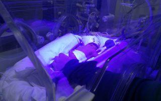 baby Joseph Price